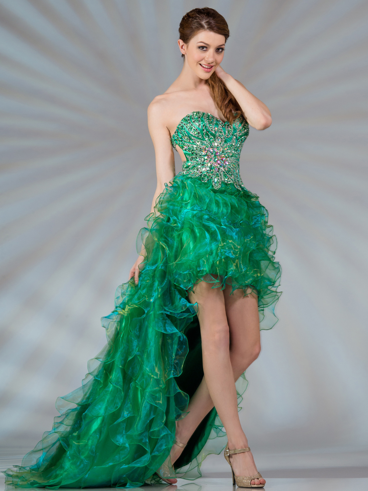 Guidelines for Buying Homecoming Dresses 2013 Online ...